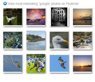 View most interesting 'google' photos on Flickriver