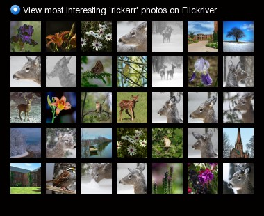View most interesting 'rickarr' photos on Flickriver