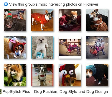 PupStylish Pics - Dog Fashion, Dog Style and Dog Design - View this group's most interesting photos on Flickriver