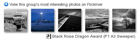 Black Rose Dragon Award (P1 A3) - View this group's most interesting photos on Flickriver