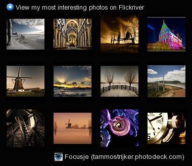 Focusje (tammostrijker.photodeck.com) - View my most interesting photos on Flickriver