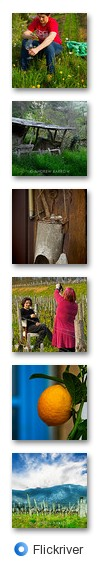 wine_scribbler - Flickriver