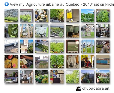 chupacabra.art - View my 'Agriculture urbaine au Québec - 2013' set on Flickriver